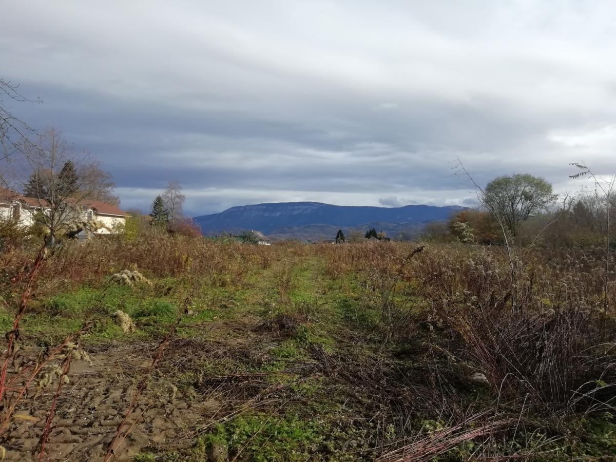 Le Clos des Frênes Lotissement
